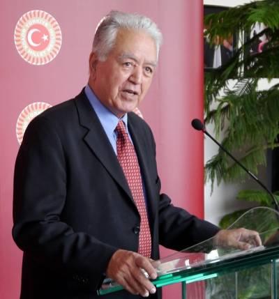 Faruk Loğoğlu, CHP Deputy Chair